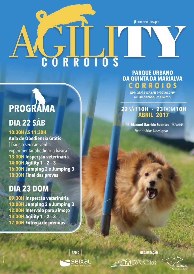 Agility 2017